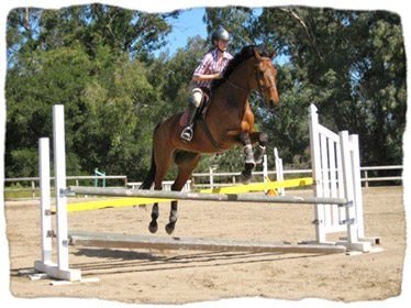 physics of equestrian Algorithm take months, not years, to find material for improved energy conversion learn more.